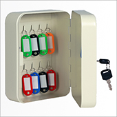 Keybox, key locking mechanism, steel, 160*200*80 mm.
